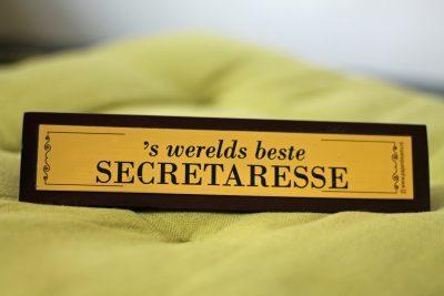 De beste directiesecretaresse, virtueel assistent, virtual professional, office manager, management assistant